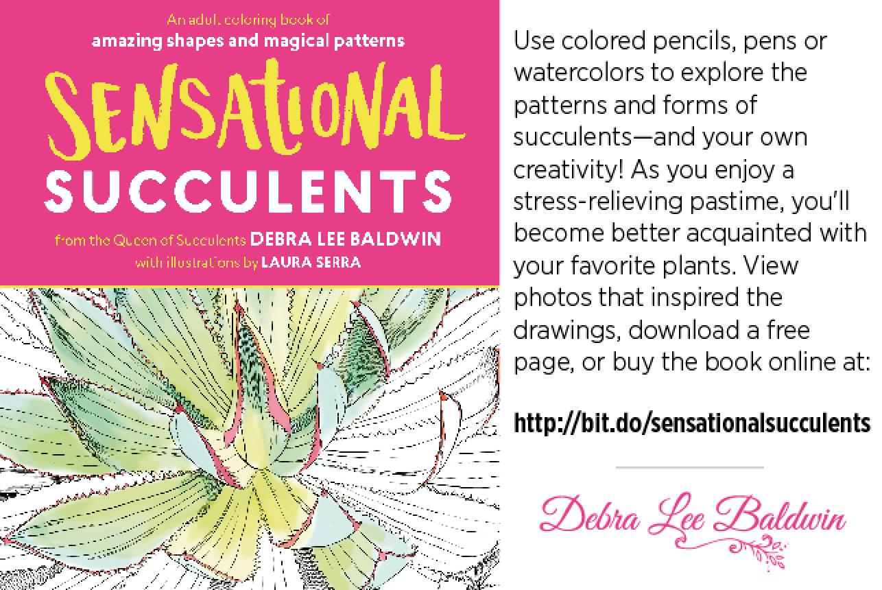 Debra Lee Baldwin Sensational Succulents 2016