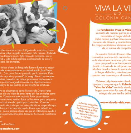 Solidarity Calendar Viva La Vida